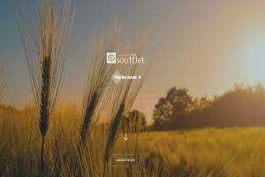 GROUP SOUFFLET LAUNCHED A NEW WEBSITE